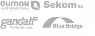 grupa_sekom